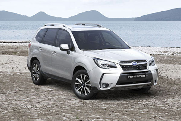 FORESTER-01